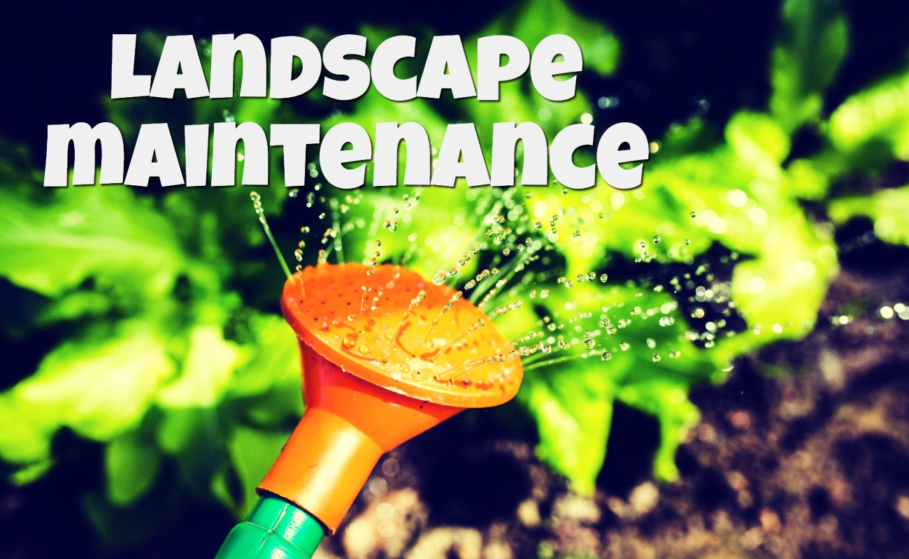 Landscape Maintennance
