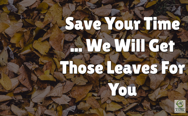 lawn care service for leaves
